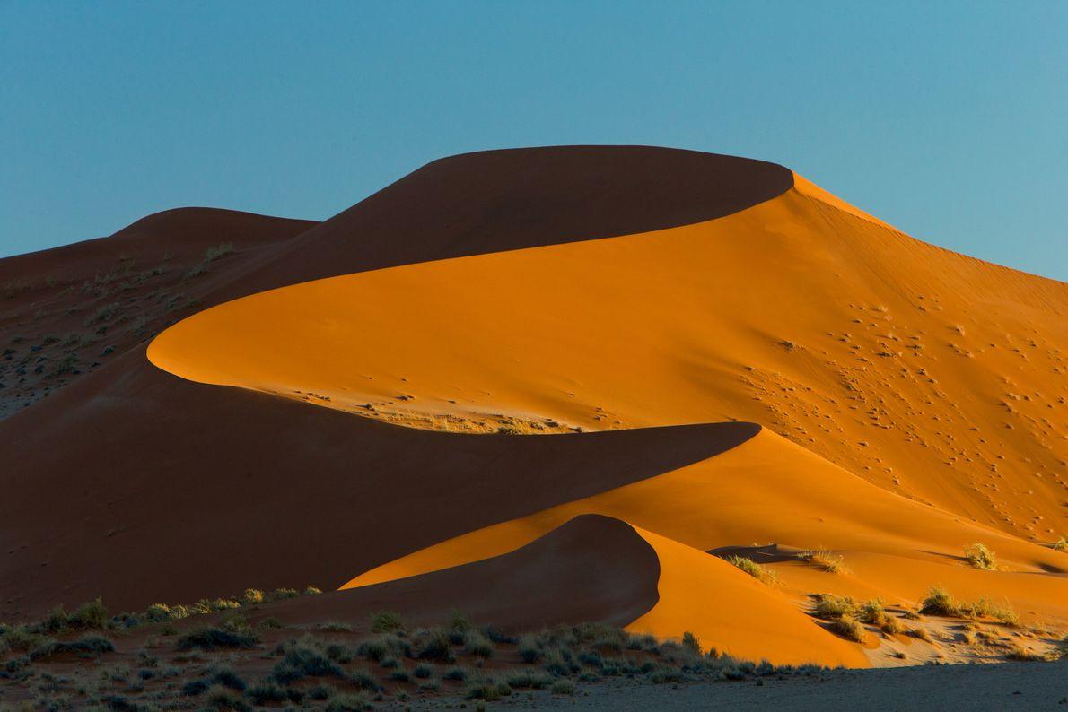 PARQUE NACIONAL DE NAMIBE-NAUKLUFT, NAMÍBIA