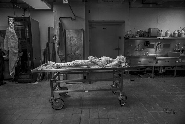 cadáver de Susan
