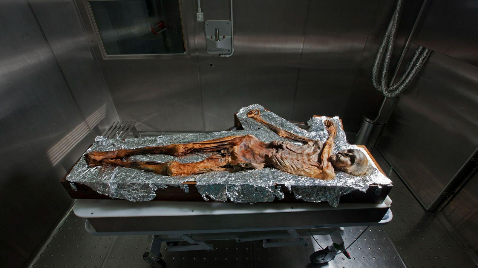 Restos mortais mumificados de Ötzi