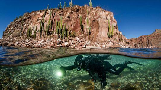 A Terra já teve e perdeu muitos oceanos. Eis onde pode surgir o próximo.