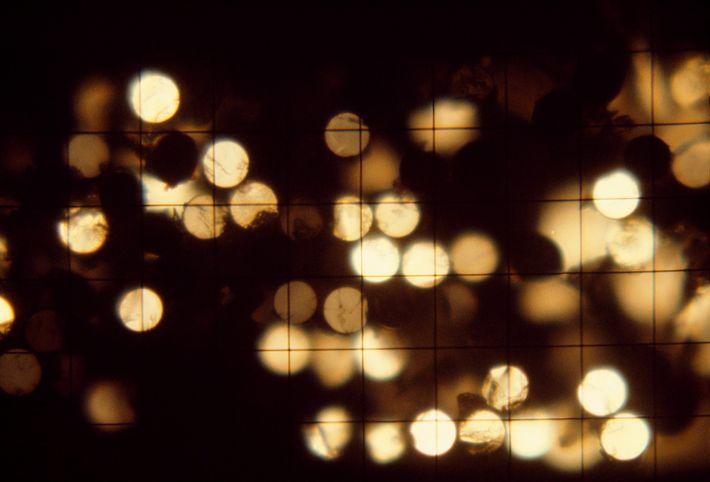 Uma visão de luz transmitida por pequenas fibras de vidro.