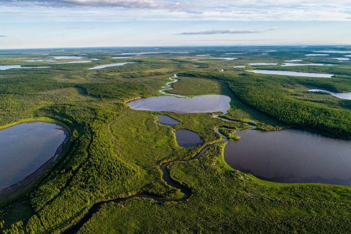 Nesta imagem aérea, o verde exuberante do Parque Pleistoceno serpenteia pelos lagos azuis do norte da ...