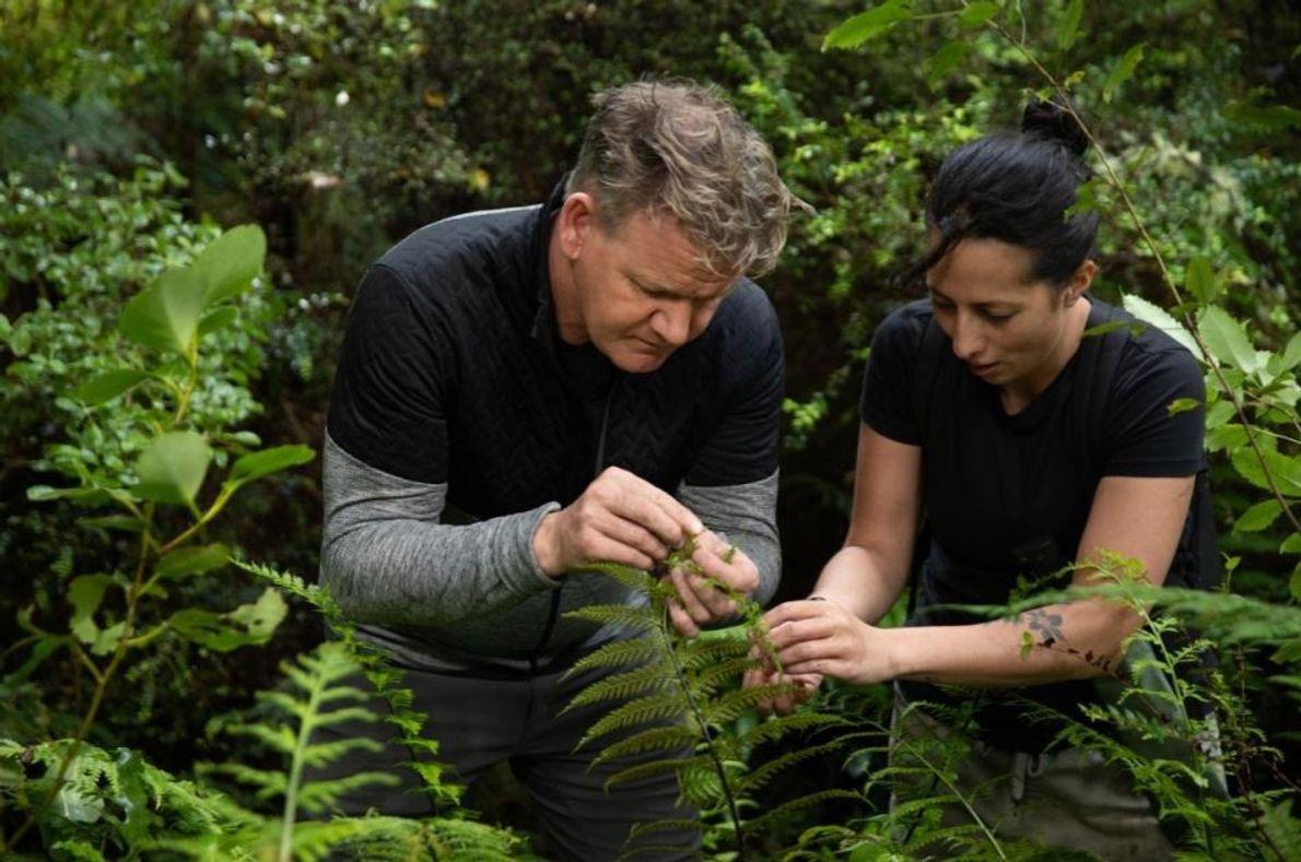 Quando os Maoris chegaram pela primeira vez à Nova Zelândia, eram maioritariamente caçadores-coletores – uma tradição ...