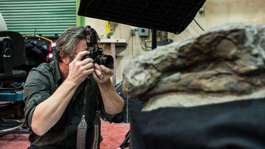 Nodossauro - Fotografar Um Fóssil de Dinossauro Único