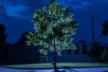 Uma árvore lunar ergue-se, iluminada por luzes artificiais, no Centro de Voo Espacial Goddard da NASA, ...