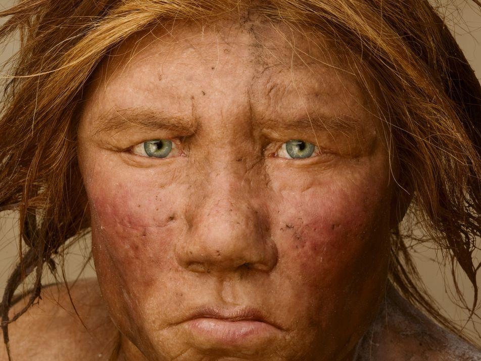 O Nosso ADN Contém Linhagens de Antepassados Humanos Misteriosos