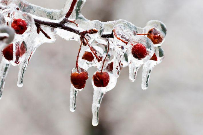 LIÇÕES GELADAS As maravilhas do inverno, como estas gotas de gelo (ou sincelos) em Montreal, podem inspirar ...