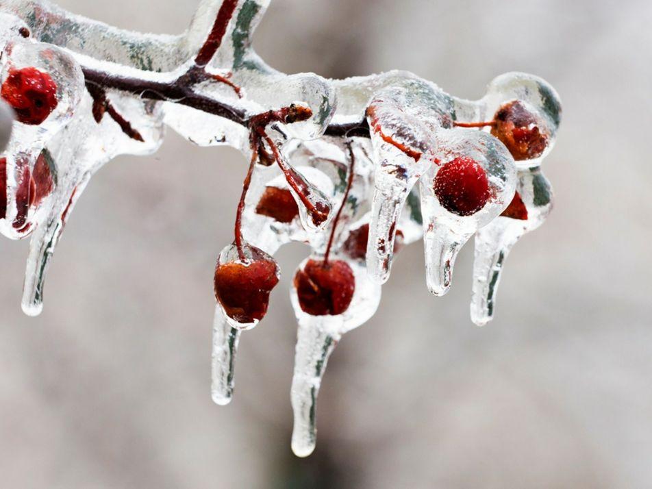 Experiências científicas de inverno para as crianças