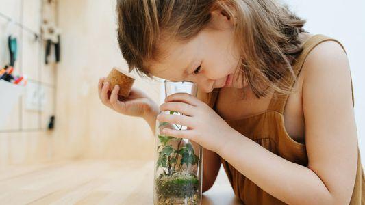 Experiências científicas para despertar a curiosidade dos seus filhos