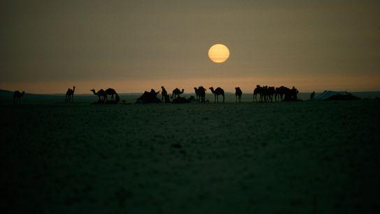 Uma imagem icónica de Thomas J. Abercrombie mostra beduínos na Arábia Saudita em 1965. O termo ...