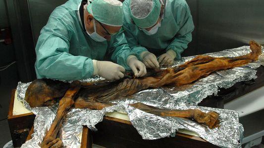 Há 5300 Anos, Ötzi, o Homem do Gelo, Morreu, e Sabe-se Hoje Qual Foi a Sua ...