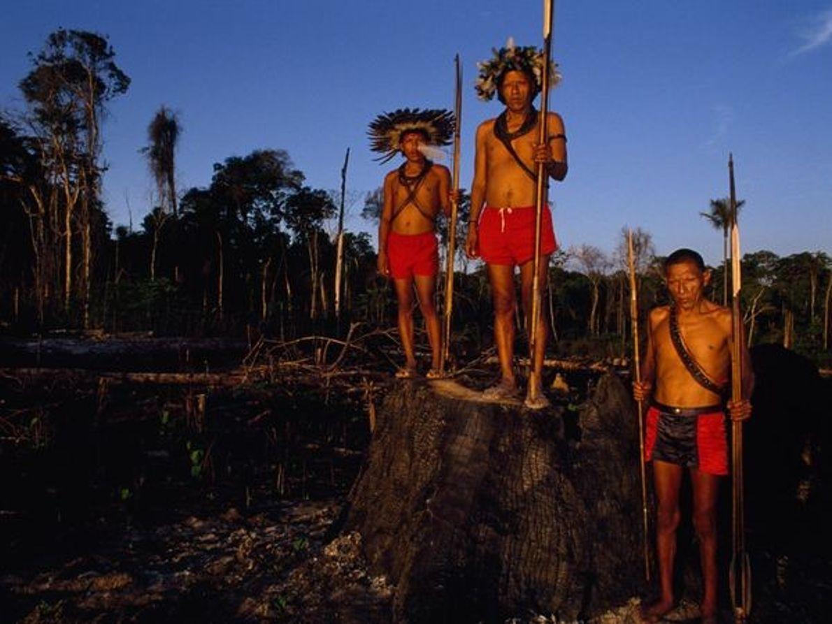 Índios Surui