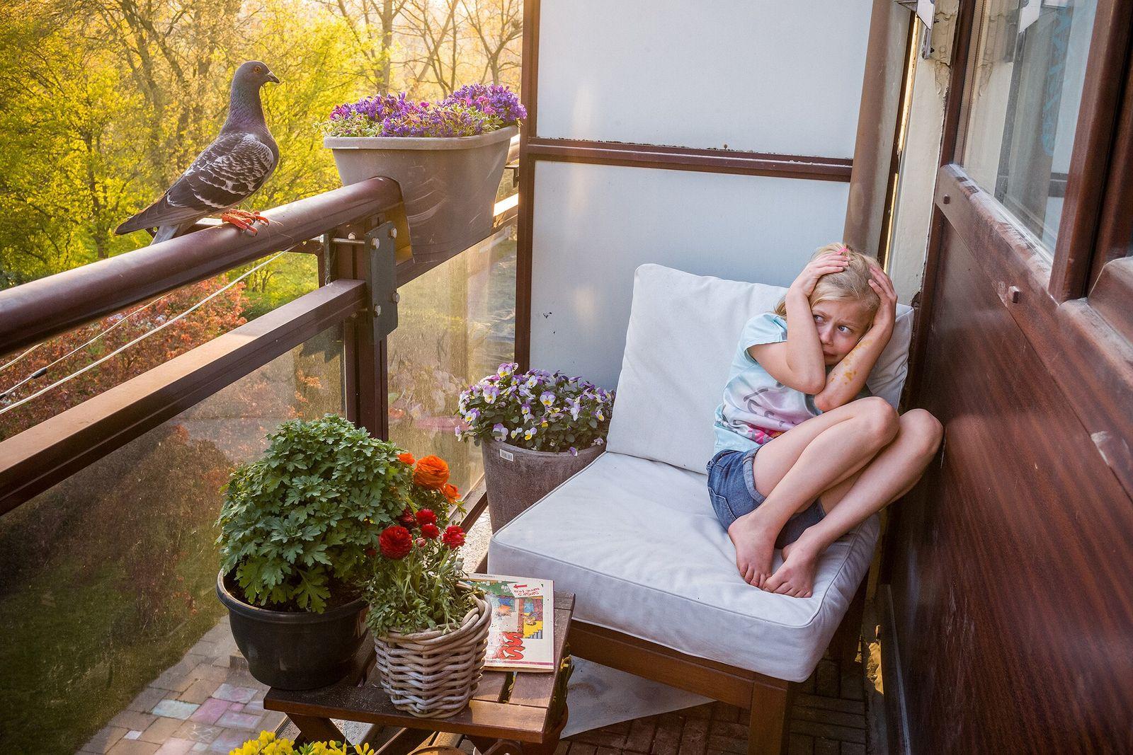 Merel Doest esconde-se quando Dollie, uma pomba, pousa na varanda da sua casa nos Países Baixos. ...