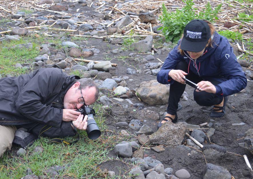 Peter Eaton e Alexandra Plácido a fotografarem a rã verde (Pelophylax perezi).