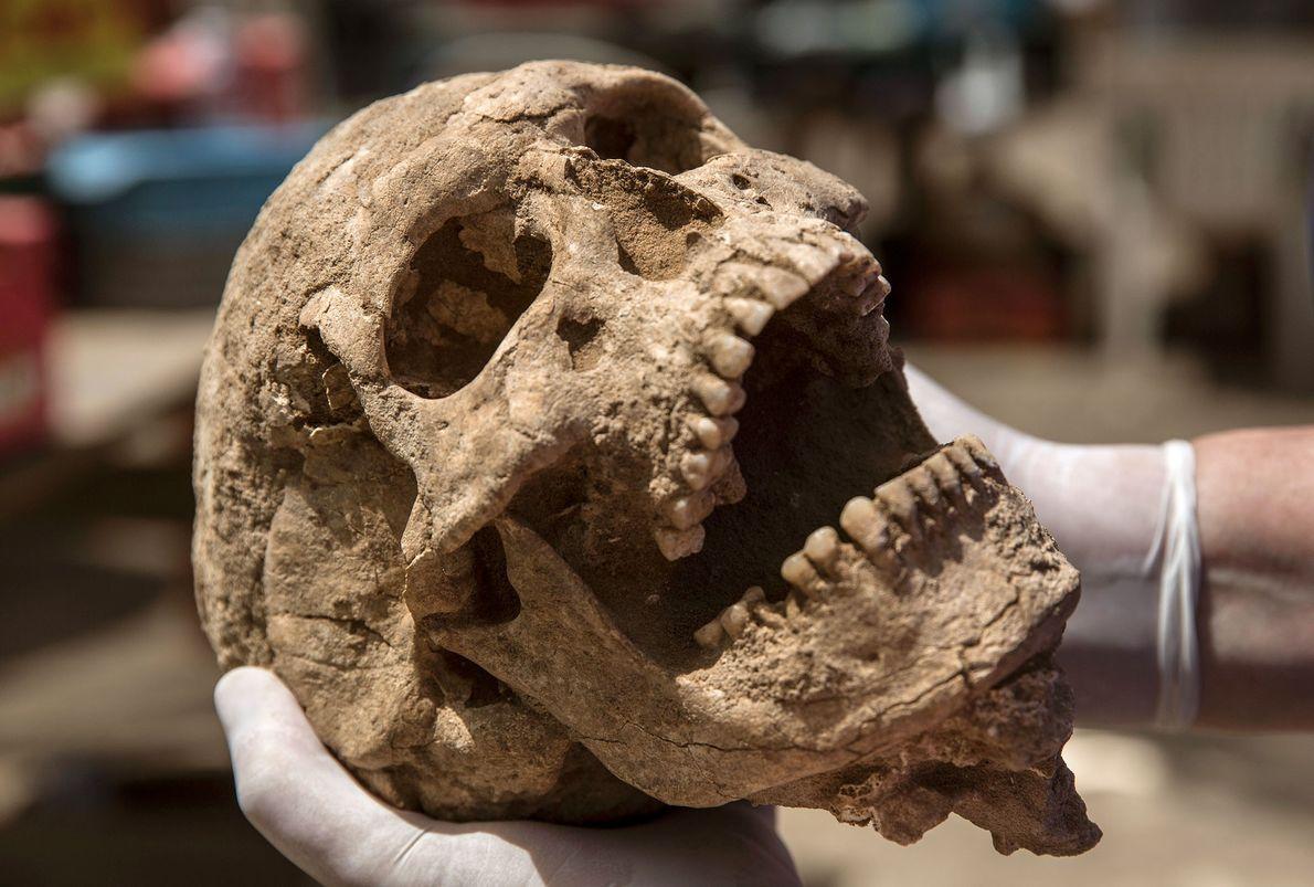 O ADN dos indivíduos enterrados no cemitério sugere que os filisteus se casavam frequentemente com pessoas ...
