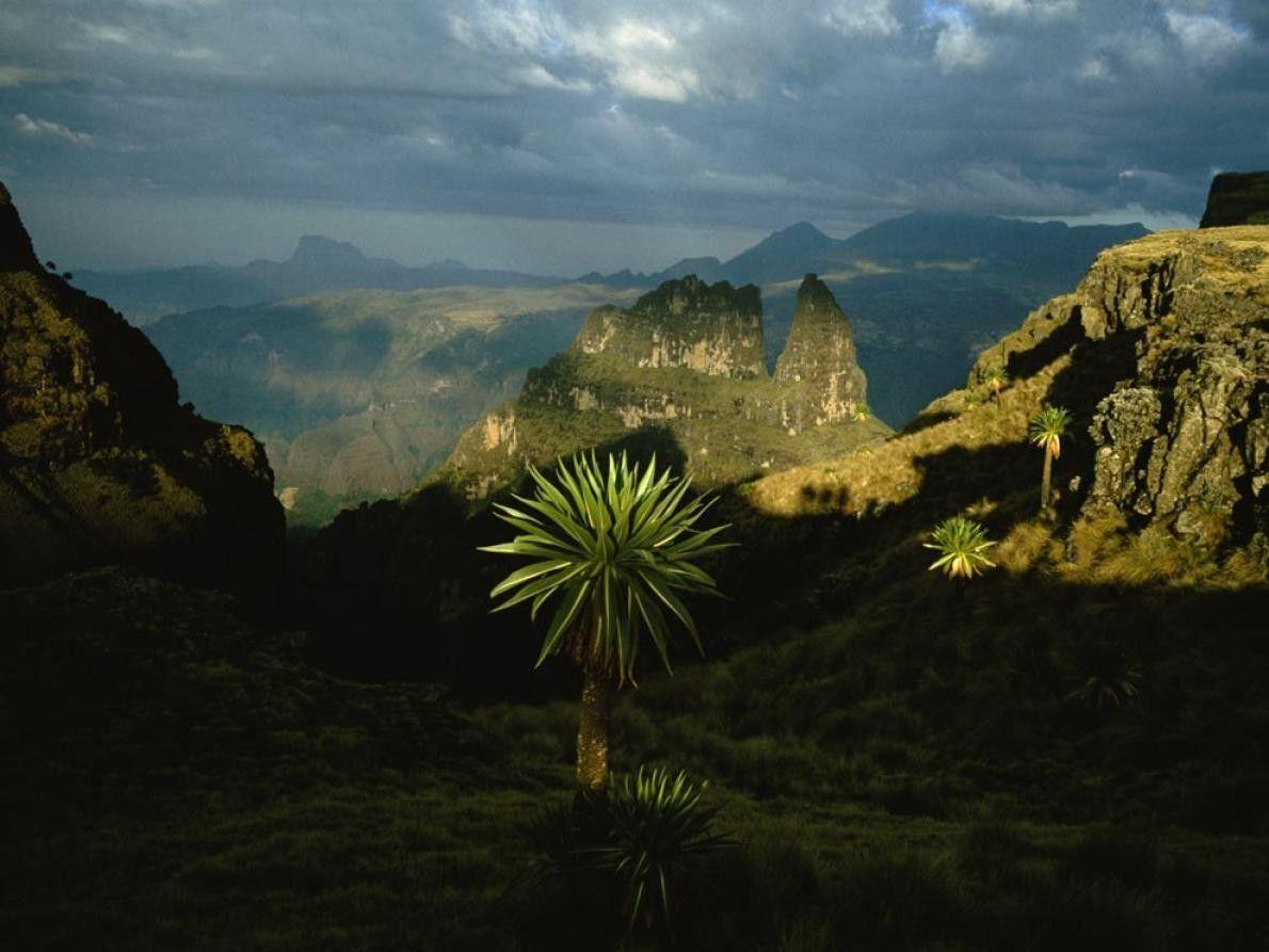 Enormes torres de basalto assentes em desfiladeiros desenhados pelas enchentes assinalam a zona da Montanhas Simen, ...