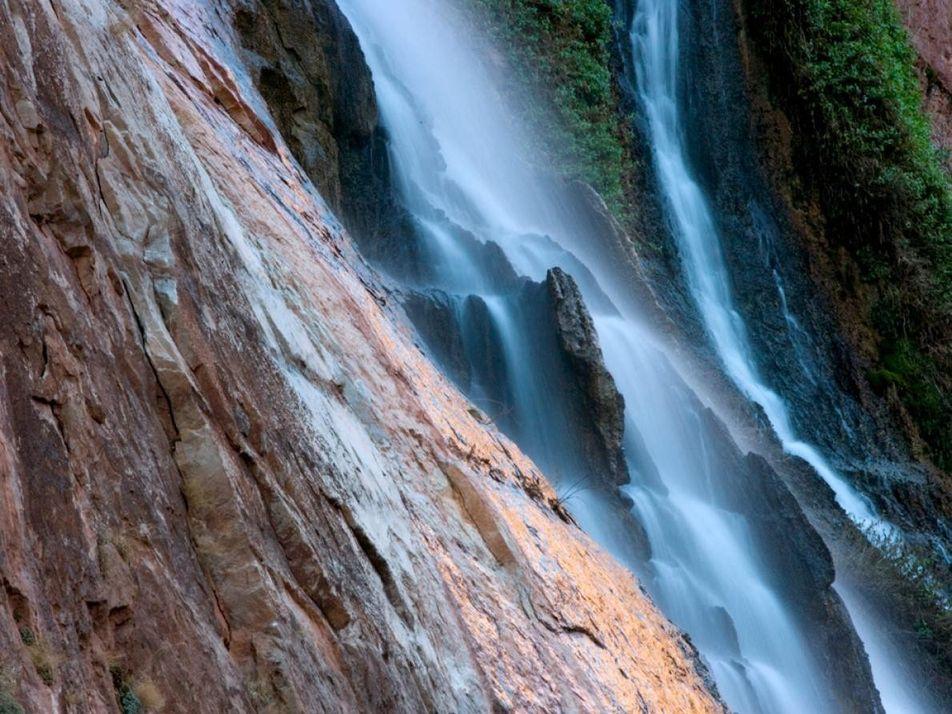 Foram encontradas as pegadas mais antigas de sempre no Grand Canyon