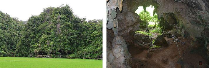 Caverna onde a pintura de javali foi encontrada