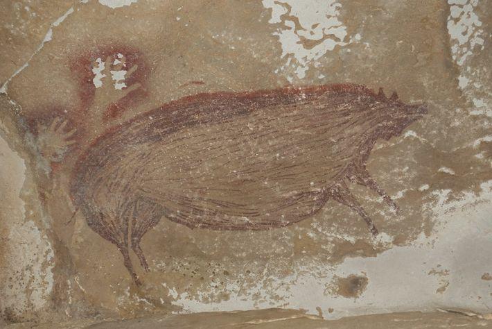 O suíno notavelmente grande que está representado na pintura rupestre pode refletir um dos principais alvos ...