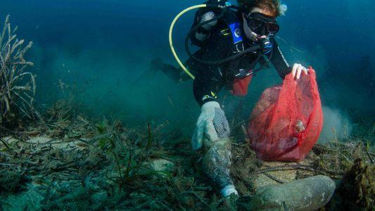 Saiba Mais Sobre a Poluição Pelos Plásticos
