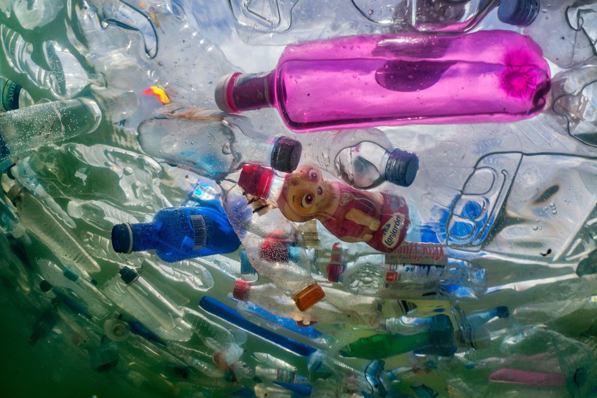 Garrafas de plástico ocupam as águas da Fonte Cibeles, em Madrid.