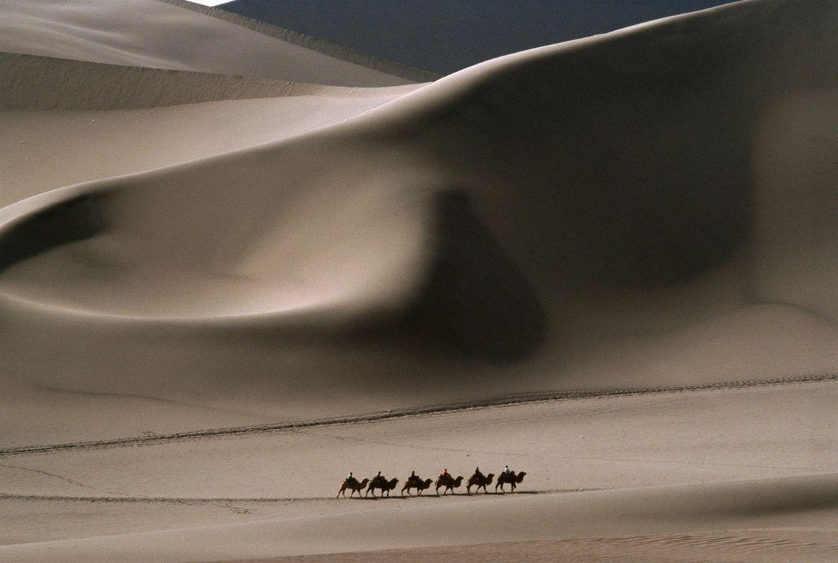Comboio de Camelos