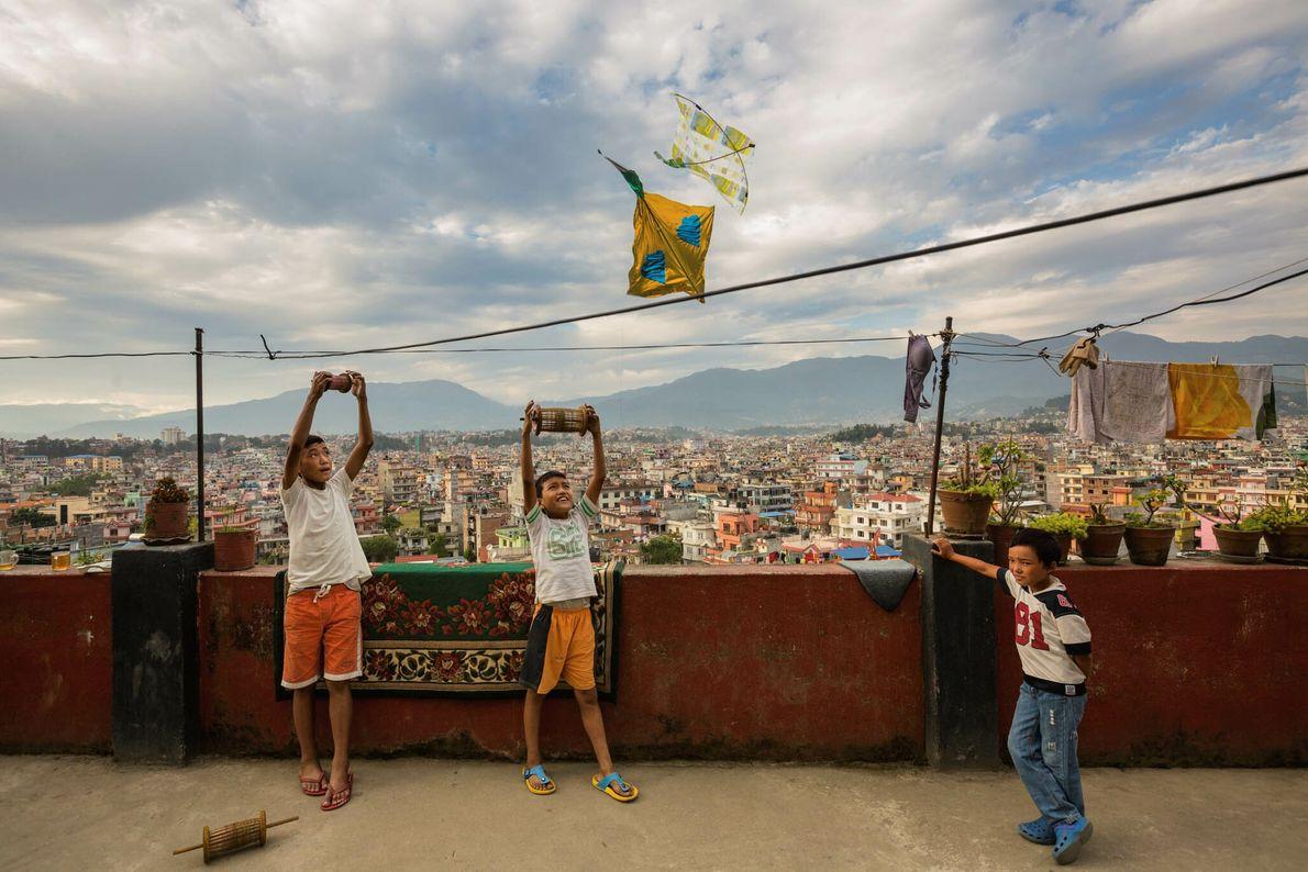Papagaios de Katmandu