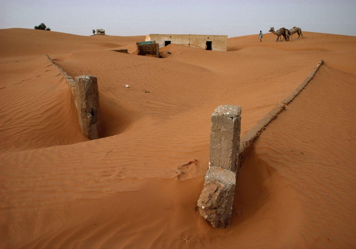 Engolidos por areia