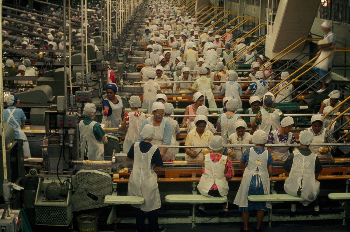 Fábrica de Fruta