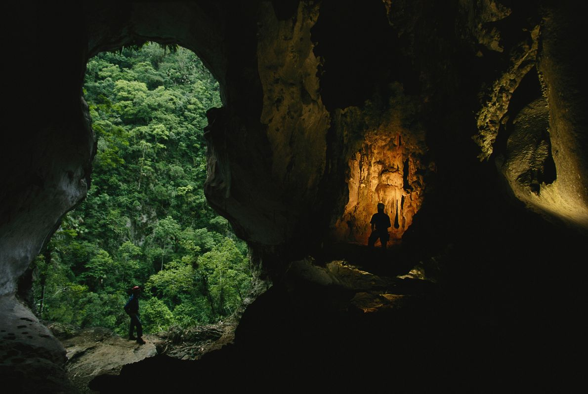 Cueva del Panal