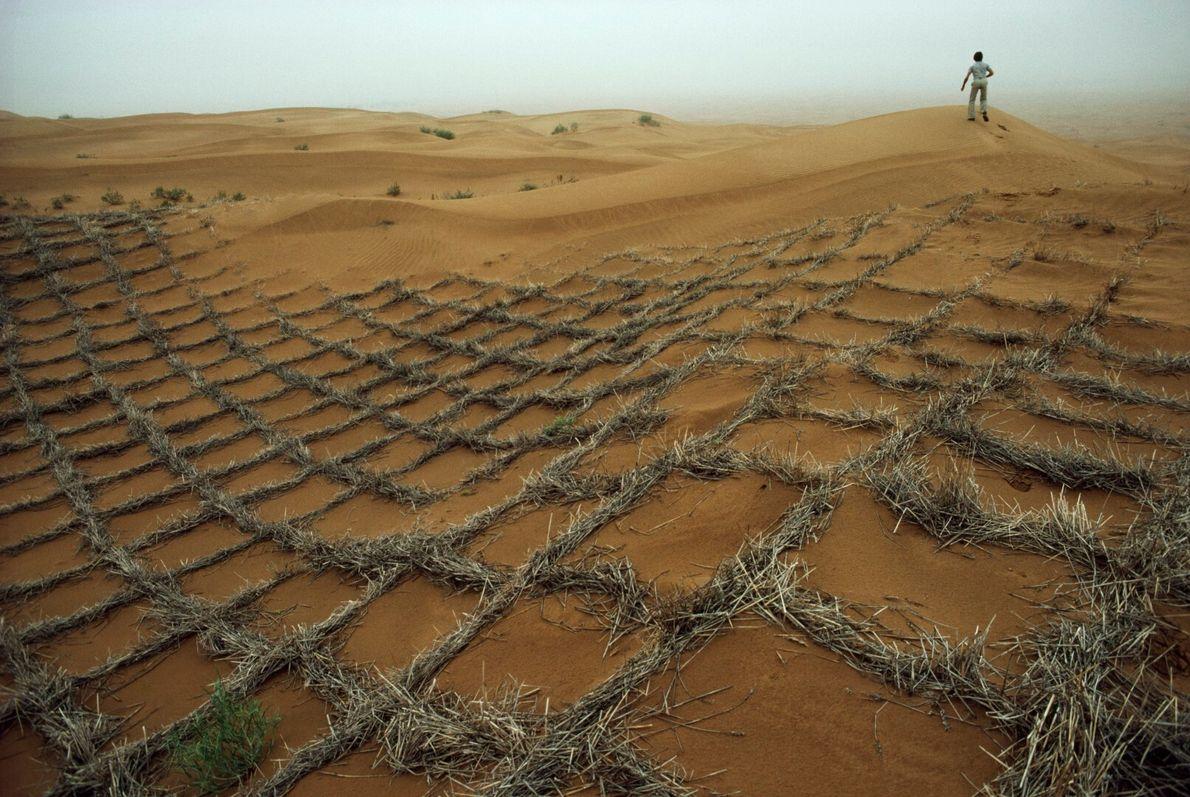 Deserto em movimento