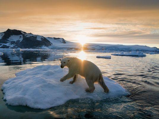 A Gronelândia Não Está à Venda
