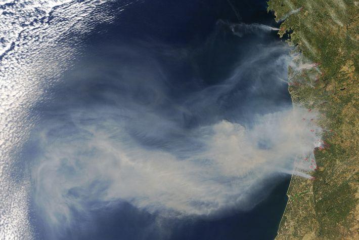 Fúria dos incêndios em Portugal, a 10 de agosto de 2016.