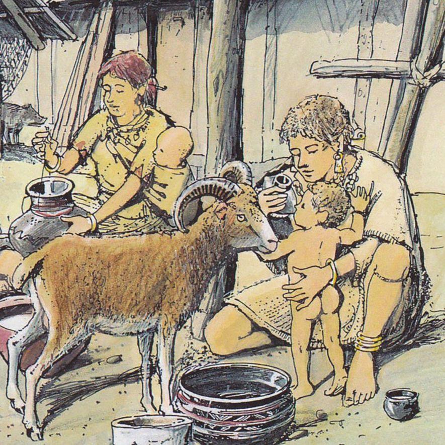 O Que Estava Dentro dos Biberões na Pré-História?