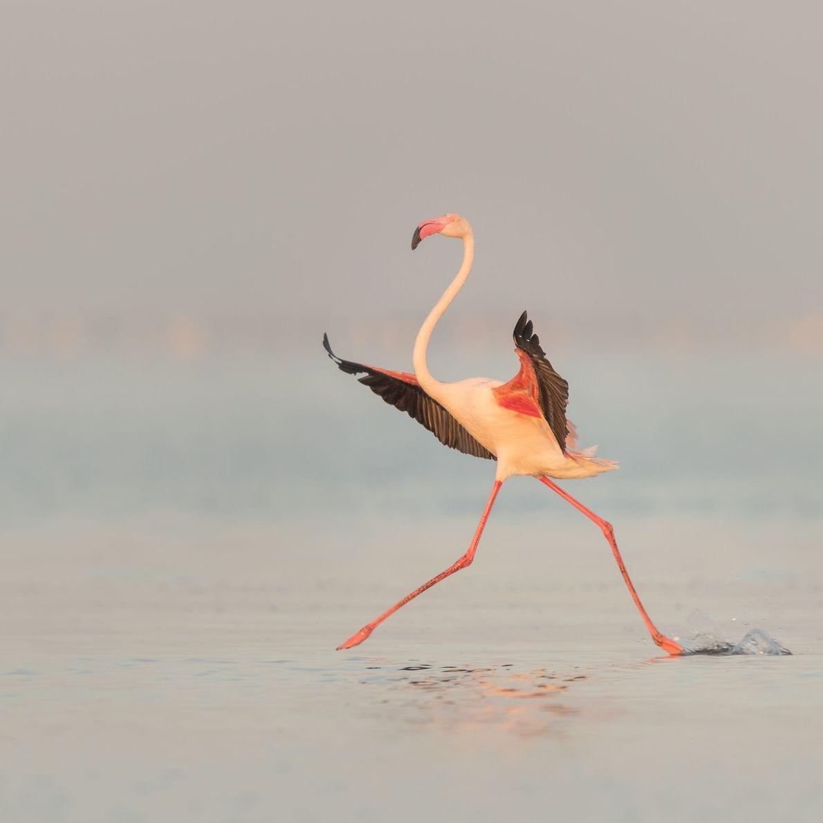 WALVIS BAY, NAMÍBIA