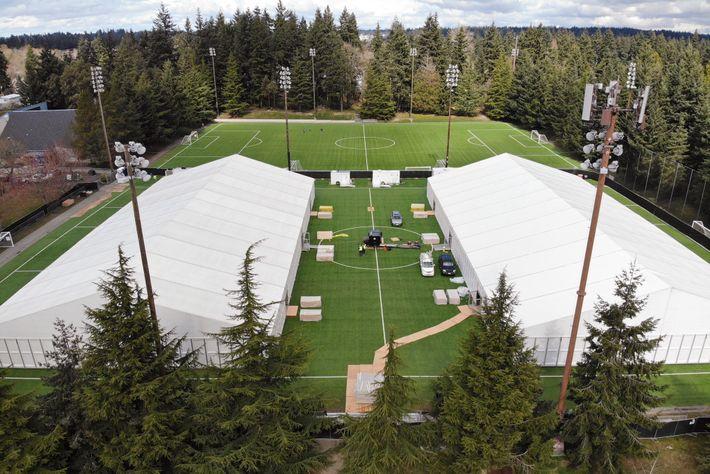 Um hospital de campanha instalado num campo de futebol perto de Seattle. A filha do autor ...