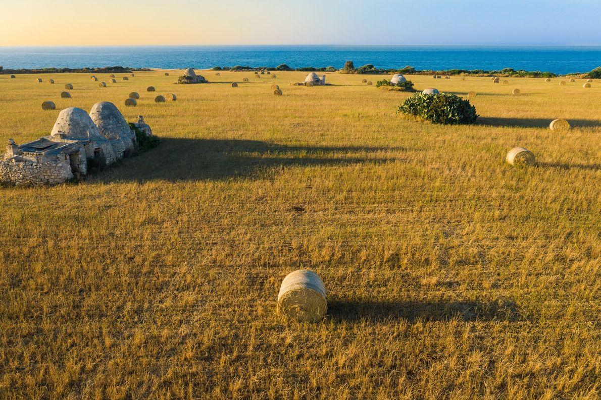 Rolos de feno distribuídos por um enorme campo de trigo cortado, em Polignano a Mare, uma ...