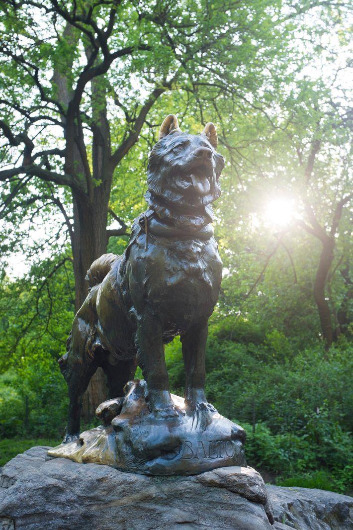 A estátua de Balto em Central Park, Nova Iorque. A placa na estátua é dedicada à ...
