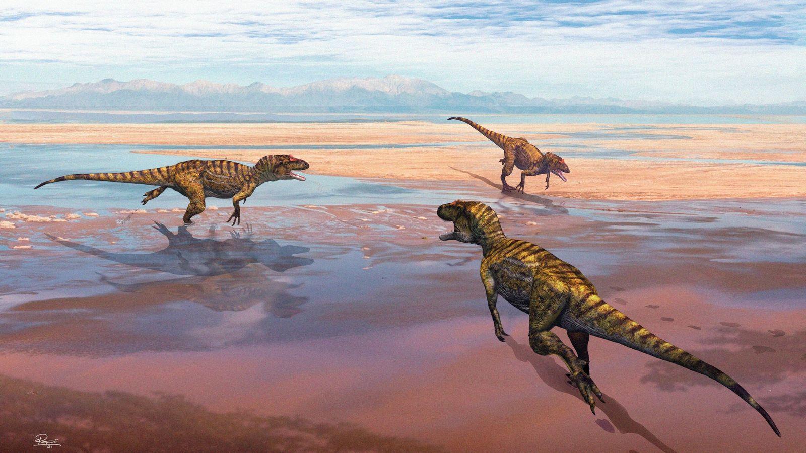 Reconstituição paleogeográfica há 156 milhões de anos.