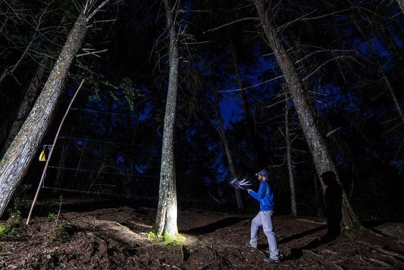Ricardo Rocha durante a captura de morcegos para trabalho de investigação em Taita Hills (Quénia).