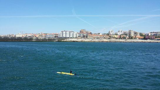 Na investigação foi analisada água do Rio Douro e água do mar junto à Foz do Porto.