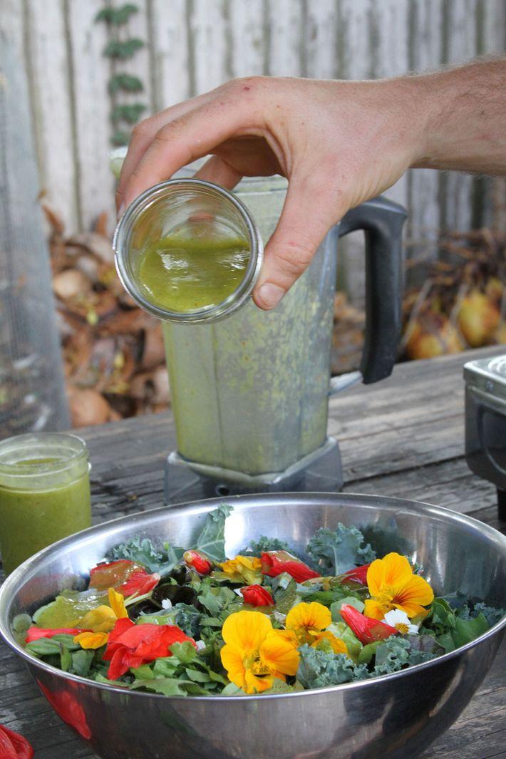 Almoço composto por alimentos forrageados ou cultivados: verduras, pimentas e ervas do quintal; com molho de ...