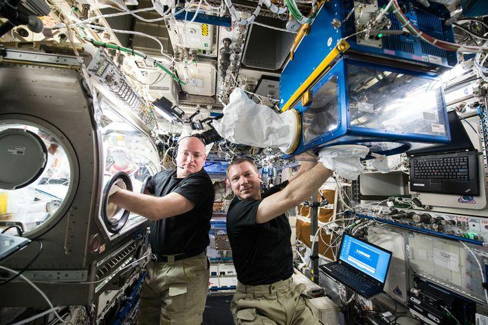 Os astronautas da NASA Terry Virts (à direita) e Scott Kelly fazem experiências para o projeto ...