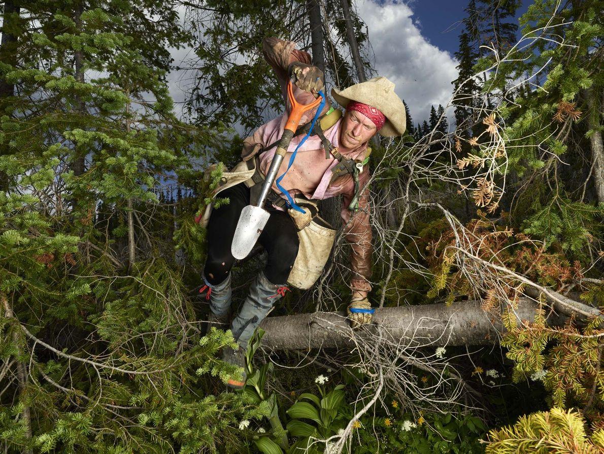 Russell Robertson está a plantar num terreno particularmente difícil, onde tem de saltar por cima de ...