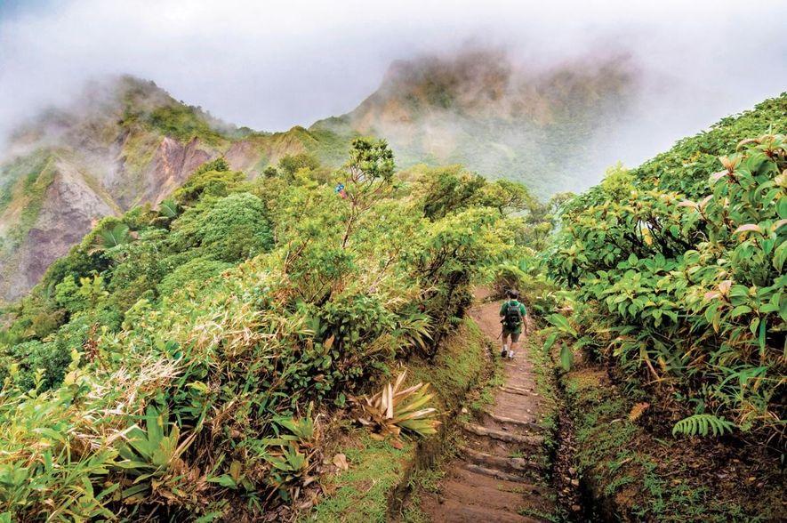 Um caminhante num dos trilhos do Parque Nacional Morne Trois Pitons, Património Mundial da UNESCO, a ...