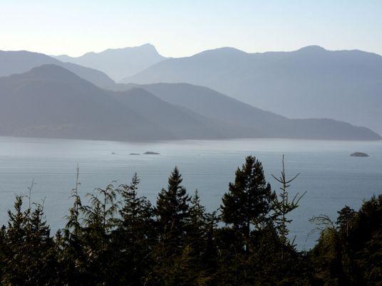Como a ciência resolveu o mistério dos pés que davam à costa no Pacífico Noroeste