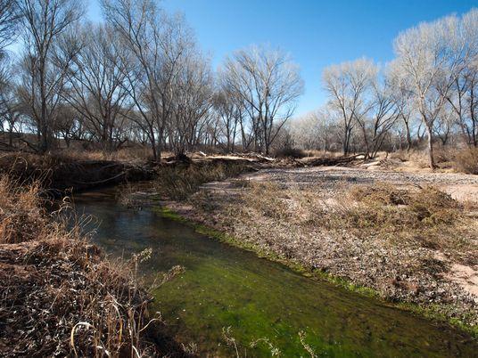 Retiramos Água em Excesso do Solo – Matando Rios