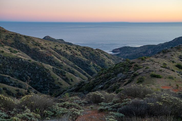 A ilha de Santa Cruz tem cerca de quatro vezes o tamanho de Manhattan e fica ...