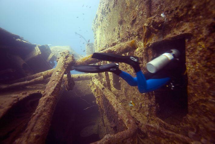 Mar Vermelho, no Egito.
