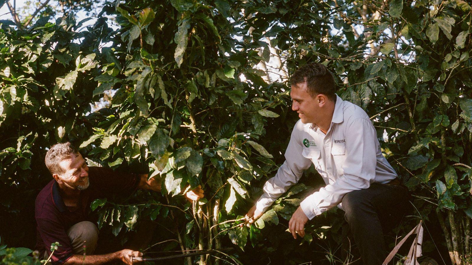 Luis e o engenheiro agrónomo Fernando podam um ramo juntos. Os dois têm agora uma relação ...